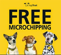 GET-YOUR-DOG-MICRO-CHIPPED-FOR-FREE